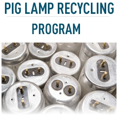 Pig Lamp Recycling Program