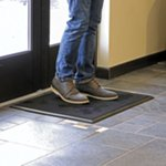 Shoe Disinfectant Mat