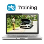 PIG® Problem Solving Strategies Training