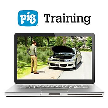 PIG® Problem Solving Strategies Training