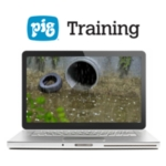 PIG® Stormwater Pollution Prevention Training