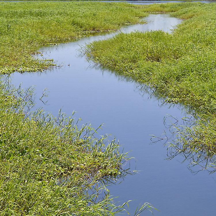 Understanding the Clean Water Act Rule Change