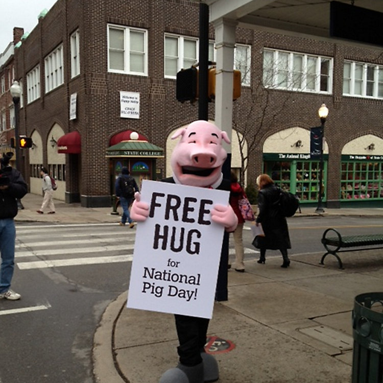 National Pig Day Is Our Favorite Day of the Year